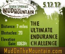 Mud On The Mountain Display ad