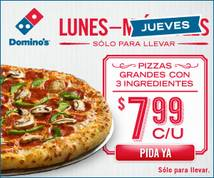Domino's Pizza Display ad