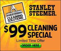 200+ stanley steemer ads - Moat Ad Search